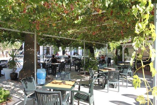 Tayyarbey Hotel: открытый бар