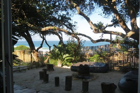 Backpackers Beach House Lodge : On-Suite Double room view