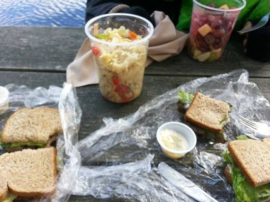 The Upper Pass Lodge: Included Picnic Lunch: Real Roast Beef and Roast Chicken Sandwiches, Pasta Salad, Fruit Salad