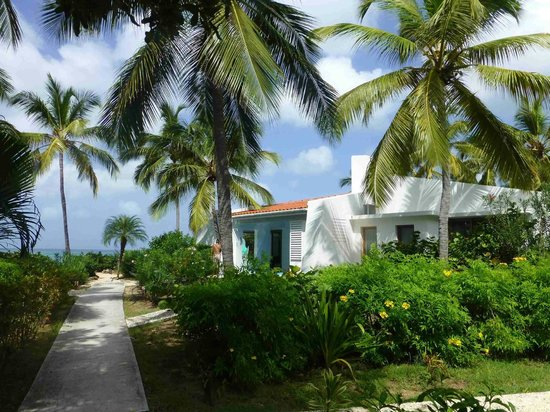 Mango Bay Resort: Garten
