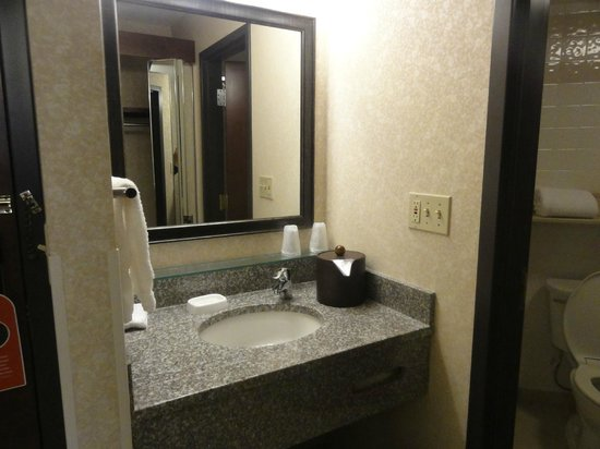 Drury Inn & Suites Houston Hobby Airport: sink area