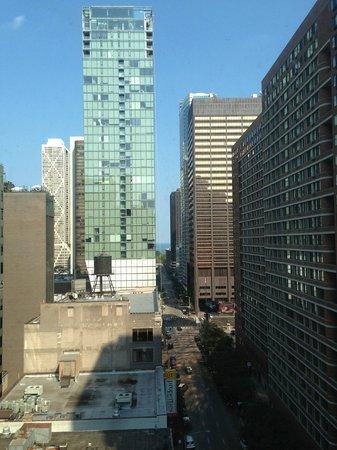 Inn of Chicago: Gorgeous views