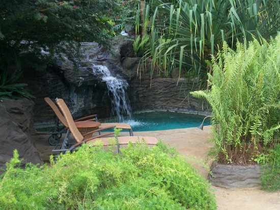 The Springs Resort and Spa: Many different pools