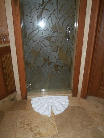 The Springs Resort and Spa: Cool shower door