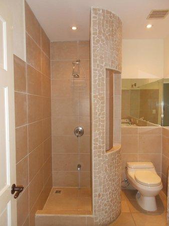 Hotel Luisiana : Shower