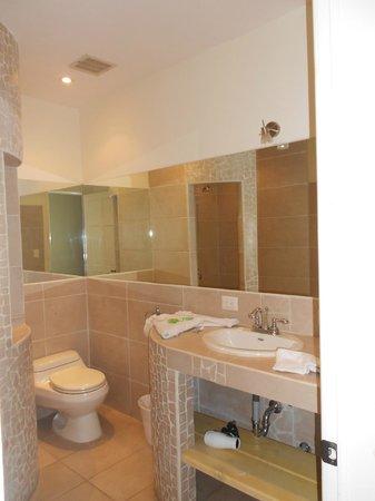 Hotel Luisiana : Bathroom1