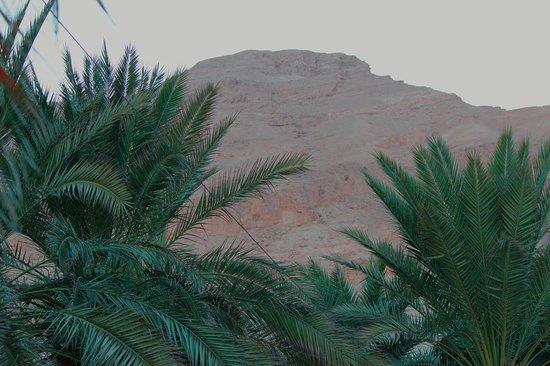 Hotel Spa Club Dead Sea: вид на горы со стороны бассейна