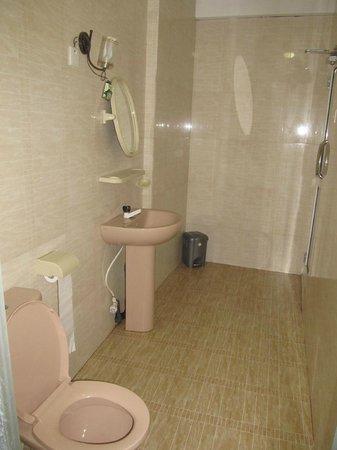 Jaffna Greengrass Hotel : bath room