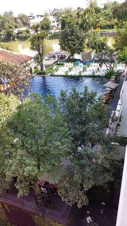 Ratilanna Riverside Spa Resort Chiang Mai : pool view from our room