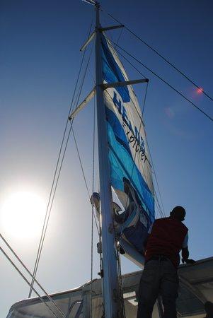 Heads Explorer Catamaran Day Cruises: Hoisting the sail