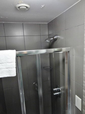 Eden Plaza Kensington: Shower