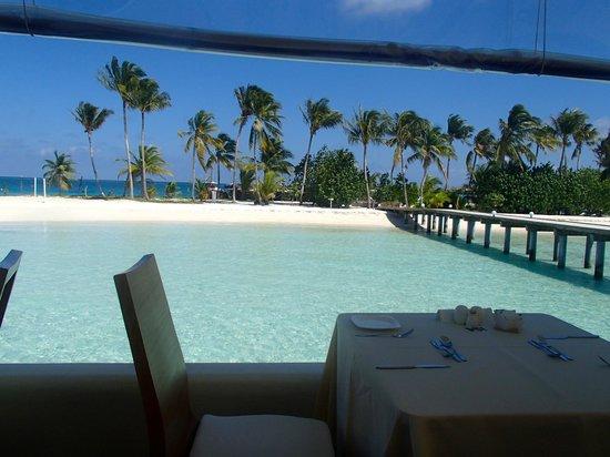 Safari Island: Sicht vom Restaurant