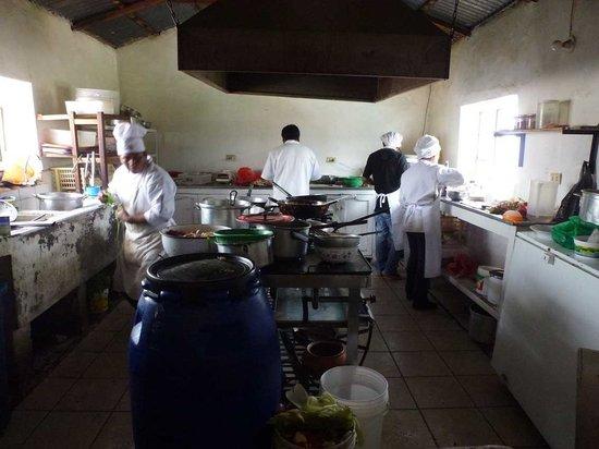 WITITI: Einsehbare Küche, recht sauber