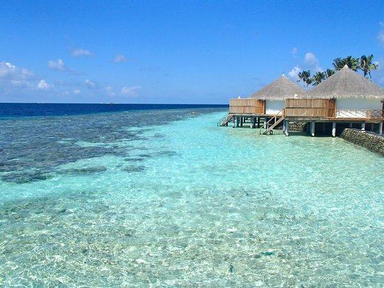 Safari Island: Semi-Water-Bungalows - Blick von Speisesaal