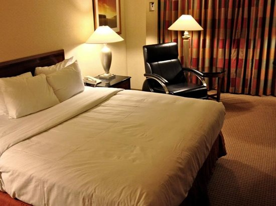 Hilton Chicago O'Hare Airport: Clean, comfortable room