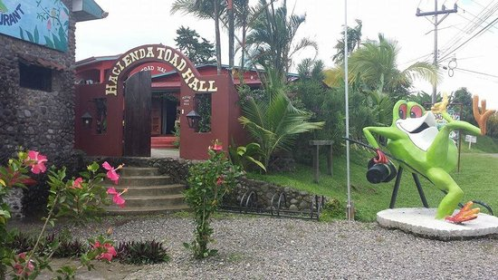 Toad Hall Hotel Arenal: Love the toad!