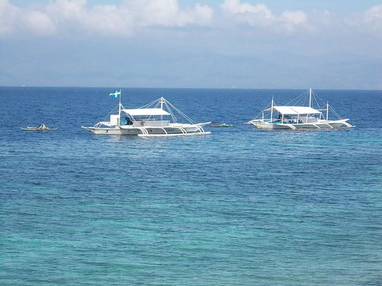 Quo Vadis Dive Resort: the view from the restaurant