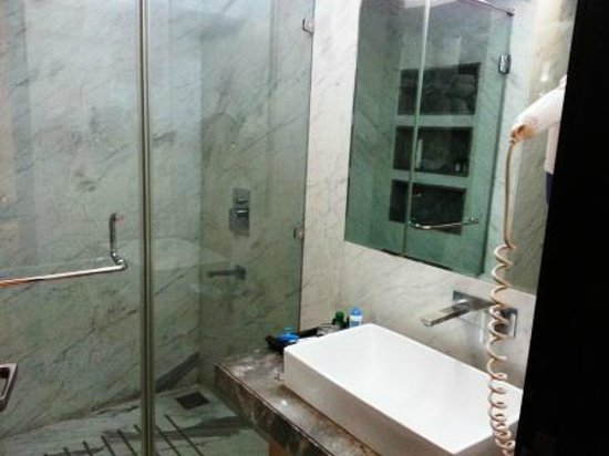 The Amber - New Delhi: shower