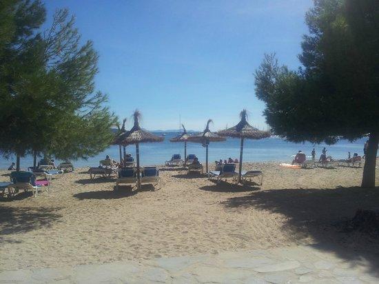 OLA Apartamentos Es Ravells D'Or: formentor beach