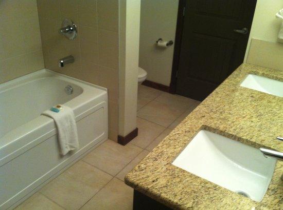 StoneRidge Mountain Resort : Bathroom