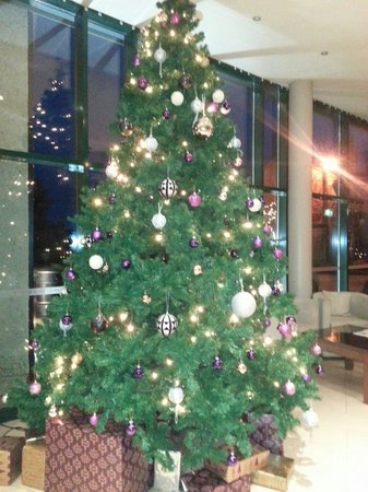 Castle Dargan : Christmas tree in lobby
