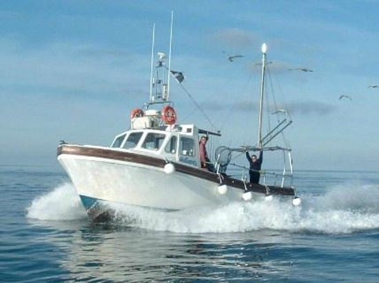 Fishnewquay: Mystique for all your shark, wreck,reef and deep sea fishing from Newquay , Cornwall.