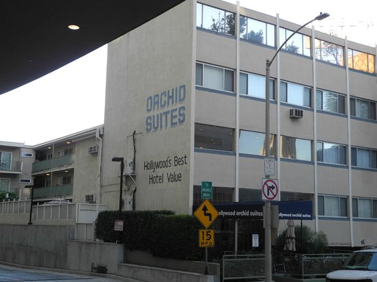 Hollywood Orchid Suites: Three Nights in Room 204