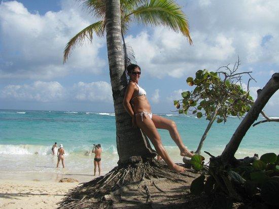 Hotel Riu Palace Punta Cana: Beach
