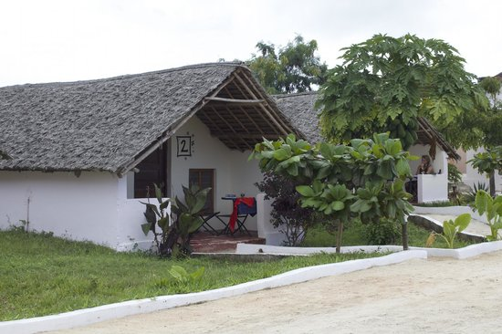 GOasis: Our lovely bungalow