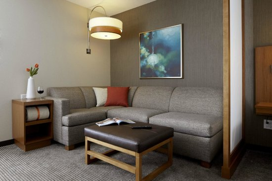 Hyatt Place Minneapolis/Downtown: living area in all guest rooms