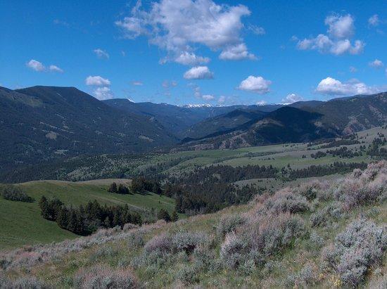 Mountain Sky Guest Ranch: Open vistas
