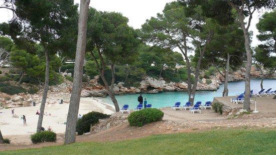 Inturotel Esmeralda Park: Strand am Meer