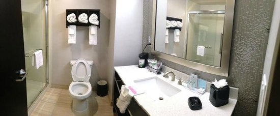 Hampton Inn Cookeville: Bathroom in all King Rooms