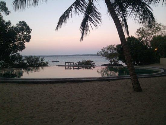 Chapwani Private Island: Invinity Pool