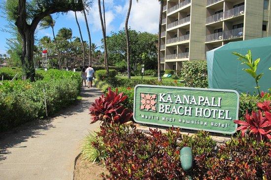 Kaanapali Beach Hotel : Public beach path along the beach front