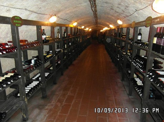 Labirintus : cantina museo del vino