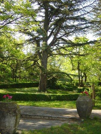 Villa Gaia : jardin parc