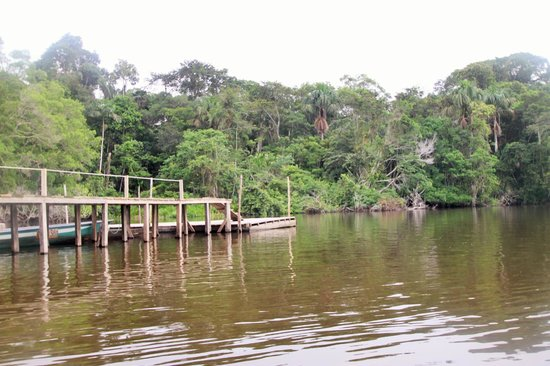 La Selva Amazon Ecolodge : The Lake and Dock