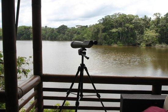 La Selva Amazon Ecolodge: View from the Lodge