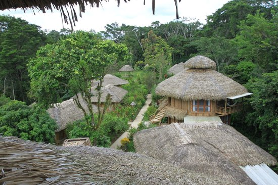 La Selva Amazon Ecolodge: View from the Observation Deck