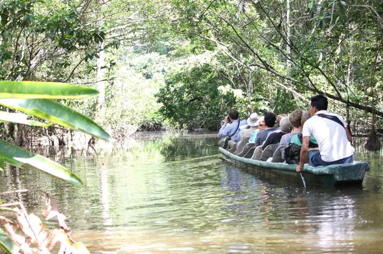 La Selva Amazon Ecolodge: Canoeing through the Lagoon