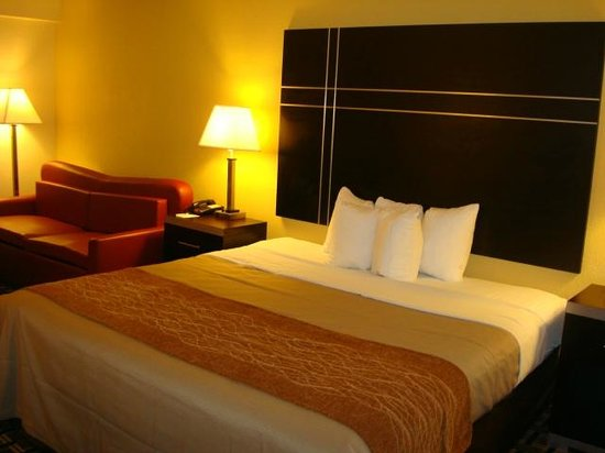 Quality Inn, Union City: King Room