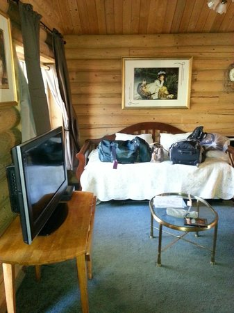 Mt. Charleston Lodge: Day bed and TV (bring DVD's no signal or cable up here)