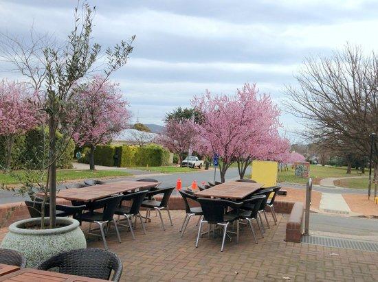 The alfresco area outside Pulp Kitchen
