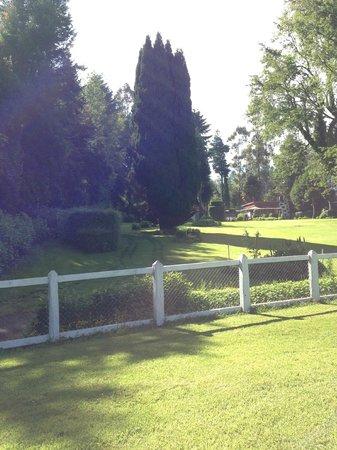 Hotel Interlaken: vista desde la piscina