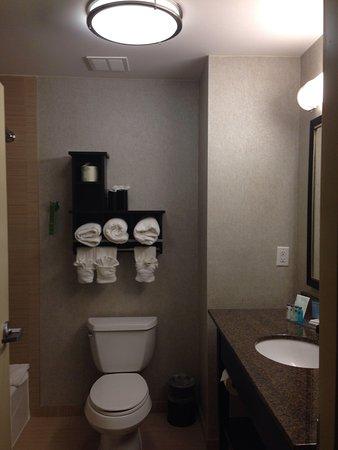 Hampton Inn & Suites Houston/League City : Standard bathroom very clean