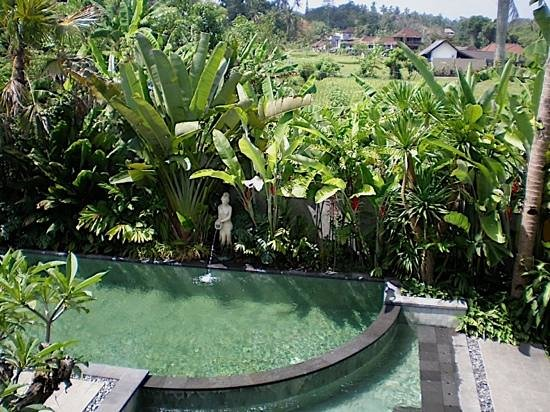 De Munut Balinese Resort: view of pool and beyond from room 305