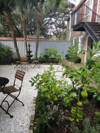 Zero George Street: Courtyard