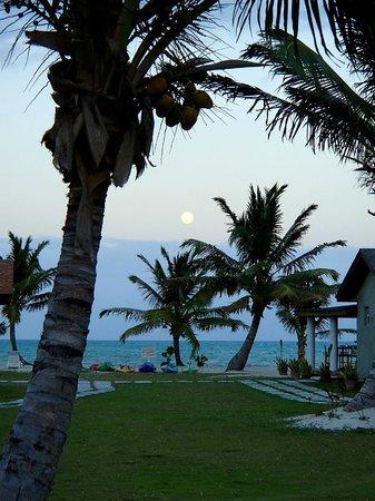 Swain's Cay Lodge: .