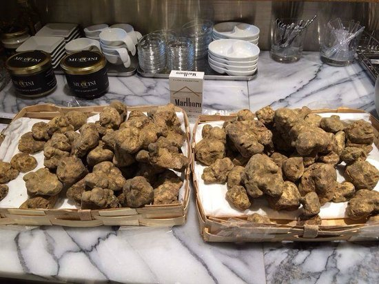 Muccini Italia, Ginza: ¡ Trufas frescas....y